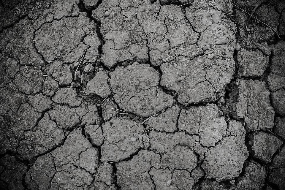 Drought Disaster Mud Texture Arid Dirt Broken